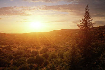Photograph - Sunset Countryside by Carlos Caetano