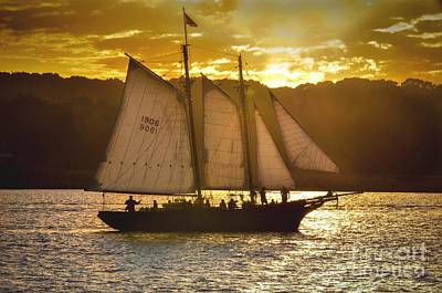 Photograph - Sunset Cruise by Amy Porter