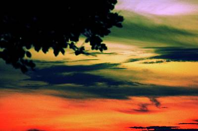 Photograph - Sunset by Dana Flaherty