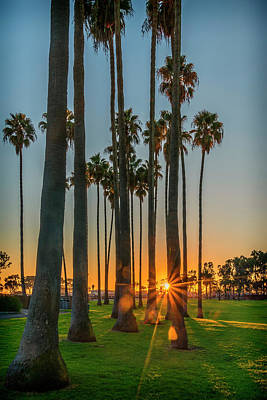 Photograph - Sunset Dana Point Palms_7r2_dsc3415_17-01-17 by Greg Kluempers