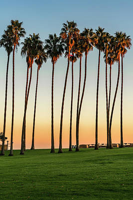 Photograph - Sunset Dana Point Palms_7r2_dsc3436_17-01-17  by Greg Kluempers