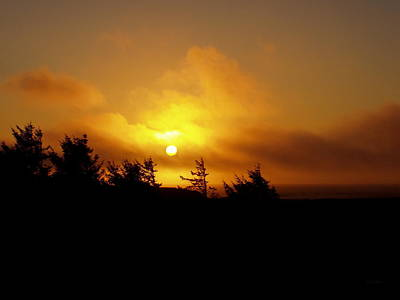 Photograph - Sunset by Deborah  Crew-Johnson