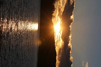 Photograph - Sunset by Denise Cicchella