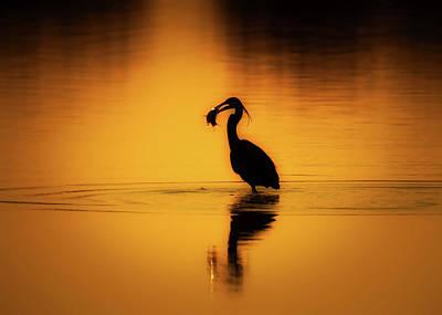 Photograph - Sunset Dinner by Lubos Houska