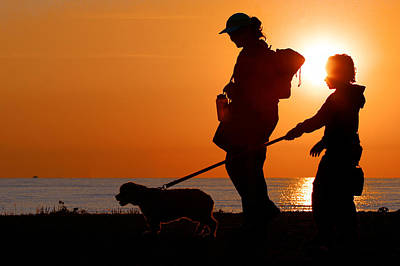 Photograph - Sunset Dog Walk by Lawrence Boothby
