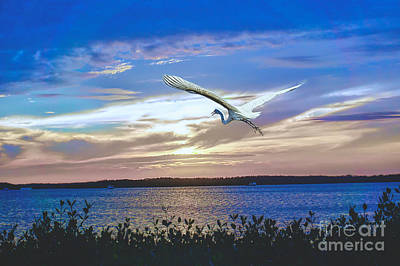 Photograph - Sunset Egret by Judy Kay