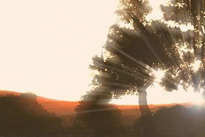 Sunset Art Print by ELA-EquusArt