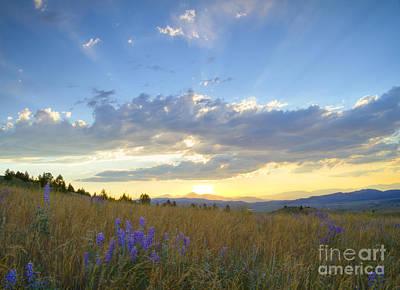 Sunset Wall Art - Photograph - Sunset Explosion by Idaho Scenic Images Linda Lantzy