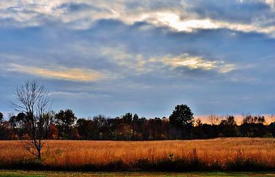 Photograph - Sunset Field by Michelle McPhillips