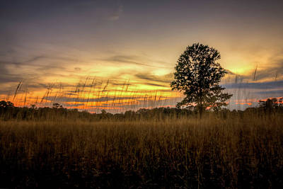 Photograph - Sunset Fields by Ryan Wyckoff