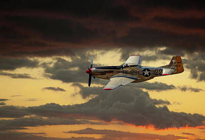 Photograph - Sunset Flight by Bill Posner
