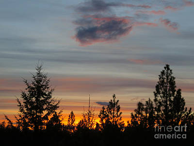 Photograph - Sunset From My Window by Cindy Murphy - NightVisions