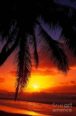 Sunset From The Beach Art Print by Vince Cavataio - Printscapes