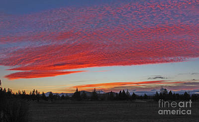 Wall Art - Photograph - Sunset by Gary Wing