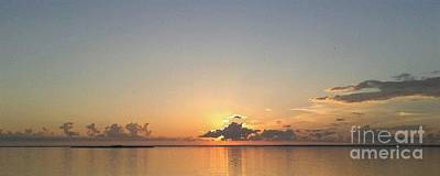 Annette Kinship Wall Art - Photograph - Sunset Glory by Annette Kinship