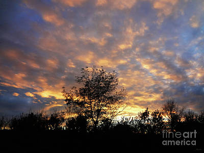 Photograph - Sunset Glow by Gem S Visionary
