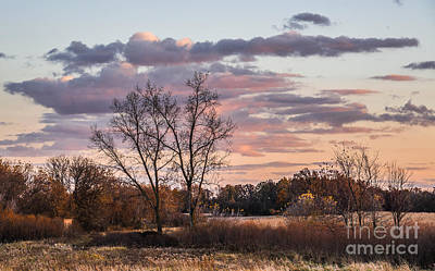 Photograph - Sunset Glow by Grace Grogan