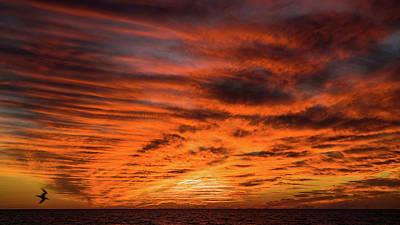 Photograph - Sunset Glow Venice Florida by Lawrence S Richardson Jr