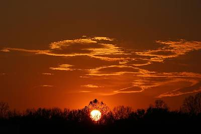 Photograph - Sunset Gold by Kathryn Meyer