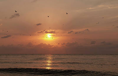 Photograph - Sunset Florida by Gouzel -