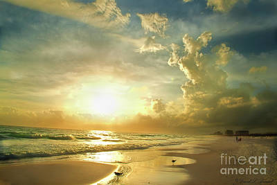 Photograph - Sunset Gulf by David Arment