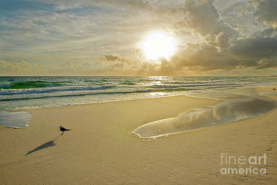 Photograph - Sunset Gulf Of Mexico by David Arment