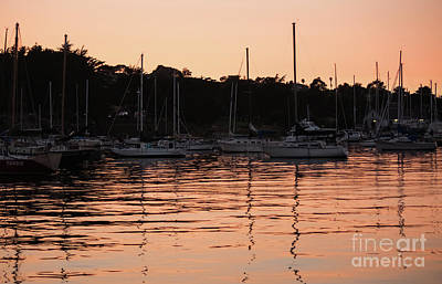 Photograph - Sunset Harbor by Suzanne Luft