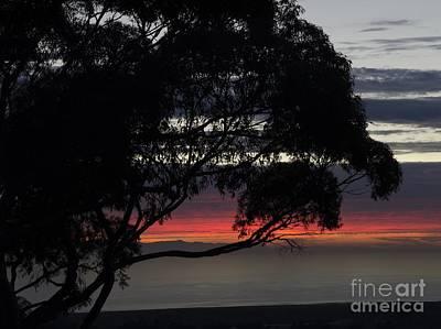 Photograph - Sunset Hill by Mathias