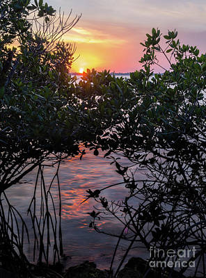 Sunset, Hutchinson Island, Florida  -29188-29191 Art Print
