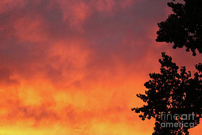 Photograph - Sunset II Reno, Nevada by Serena Ballard