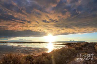 Photograph - Sunset Illumination by Spencer Baugh