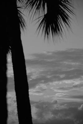 Photograph - Sunset In Black And White by Rob Hans