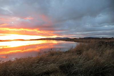 Photograph - Sunset In Bow, Washington by Karen Molenaar Terrell