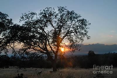 Sunset In Chico Art Print by Richard Verkuyl
