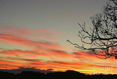 Photograph - Sunset In County Down by Nina Ficur Feenan