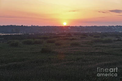 Photograph - Sunset In Ludo Natural Reserve by Angelo DeVal