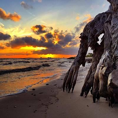 Iphone Photograph - Sunset In Ocean Springs by Joan McCool
