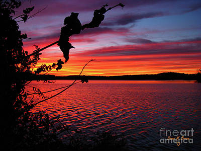 Art Print featuring the photograph Sunset In Pennsylvania by Donna Brown