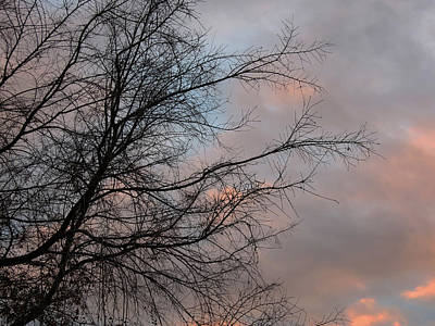 Photograph - Sunset In Pink And Blue by Laurel Powell