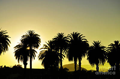 Photograph - Sunset In Socal by Clayton Bruster