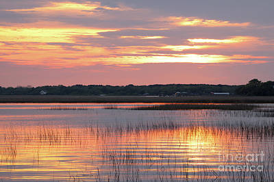 Photograph - Sunset In South Carolina by Benedict Heekwan Yang
