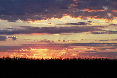 Photograph - Sunset In The Corn by Jane Eleanor Nicholas