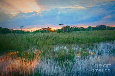 Painting - Sunset In The Glades by Judy Kay