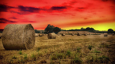 Bale Photograph - Sunset In The Hay by Martin Newman