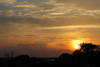 Photograph - Sunset In The Park by Robert Banach