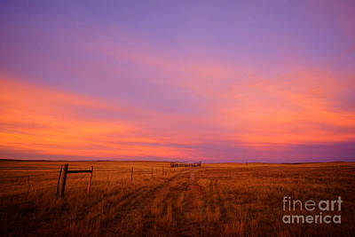 Photograph - Sunset In Wyoming by Benedict Heekwan Yang