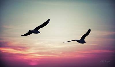 Photograph - Sunset by Joseph Westrupp