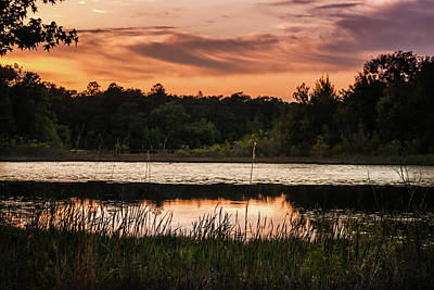 Photograph - Sunset Lake Seminole by Debra Forand