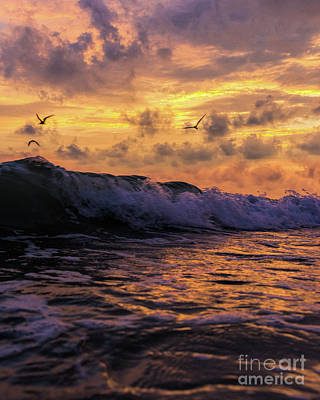 Photograph - Sunset Lido Beach by Damon Powers