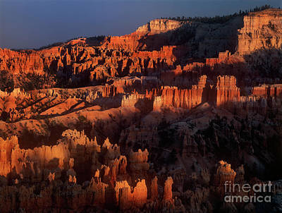 Photograph - Sunset Light On Hoodoos Bryce Canyon National Park Utah by Dave Welling